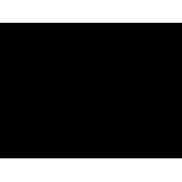 Amelia Casablanca srl P. IVA 02951140835Â's Company logo